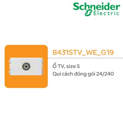 Ổ CẮM TV SCHNEIDER 8431STV_WE_G19