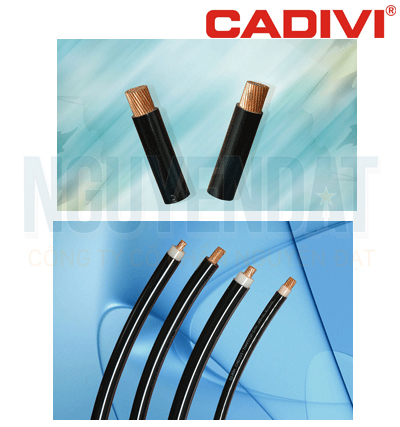 DÂY ĐIỆN LỰC HẠ THẾ KHÔNG VỎ CADIVI XLPE - CX-0,6/1 kV