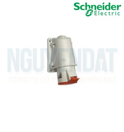 Ổ CẮM NỔI SCHNEIDER IP44 16A PKF16W423